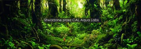 CAL Aqua Labs Green Base XR 2L SUBSTRAT POD ŻWIR