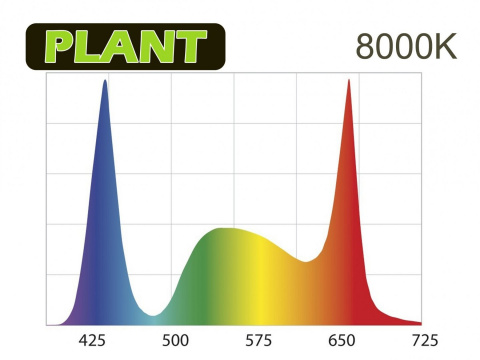 AQUAEL LEDDY SMART 2 PLANT BLACK 8000K lampka led