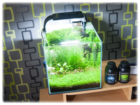 AQUAEL SHRIMP SET SMART 2 białe AKWARIUM 10L