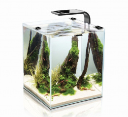 AQUAEL szyba z wycięciem SHRIMP SET SMART 30 BLACK